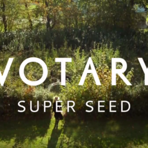 Calm your skin beautifully with VOTARY Super Seed Facial Oil